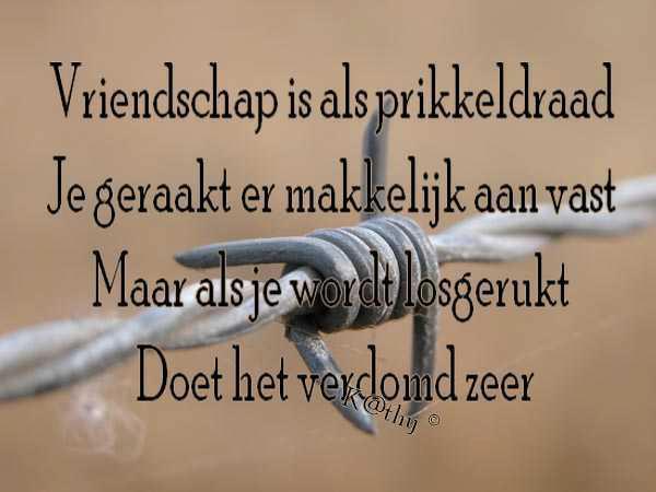 Citaten Vriendschap : Vriendschap mareiki ॐ
