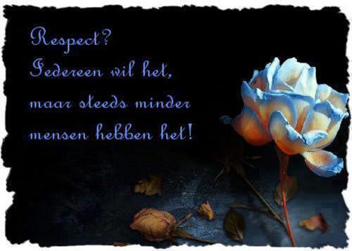 Citaten Over Respect : Respectloos mareiki