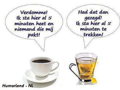 afvallen met thee