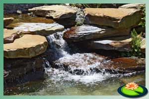 water rotsen