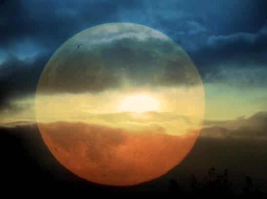 Afbeeldingsresultaat voor plaatje volle maan